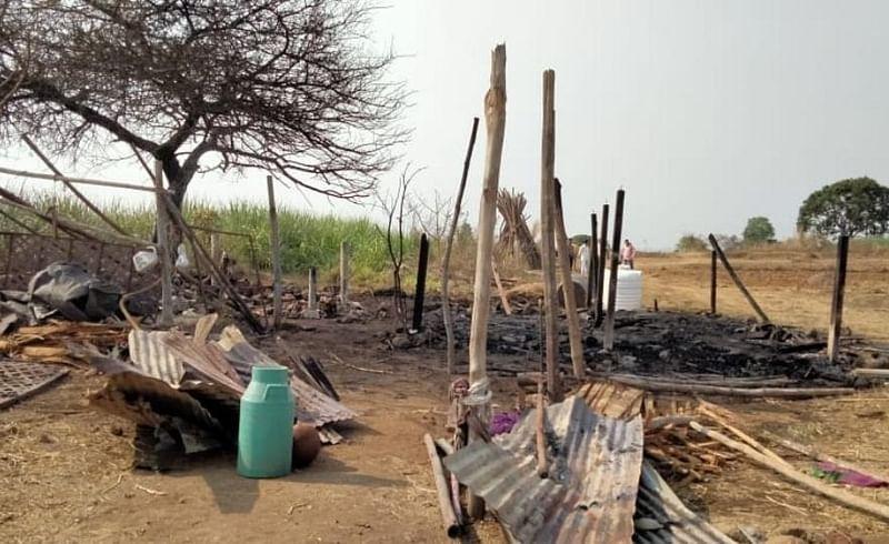 fire in cow house near shirala sangli five animals dead in fire