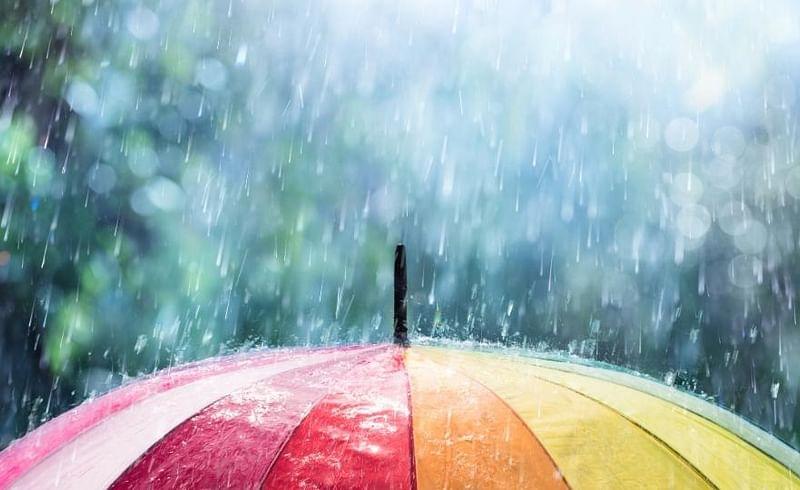 Pune Rain Raincoat Umbrella IMD Maharashtra