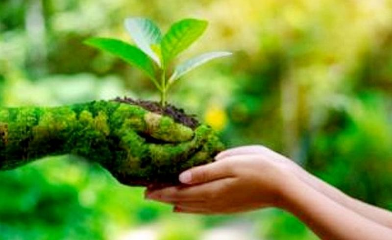 The Rotary Club of Karjat City has undertaken an eco-friendly toothbrush initiative to protect the environment