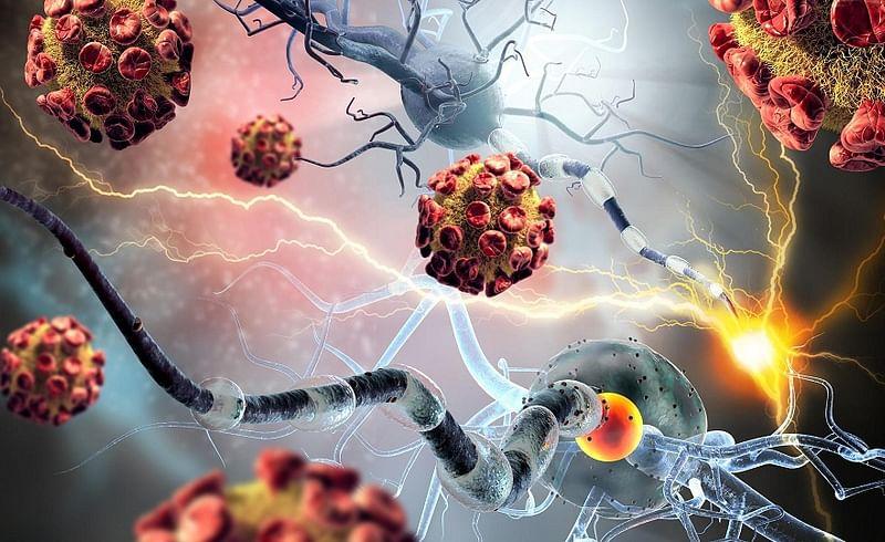autoimmune 1.jpg