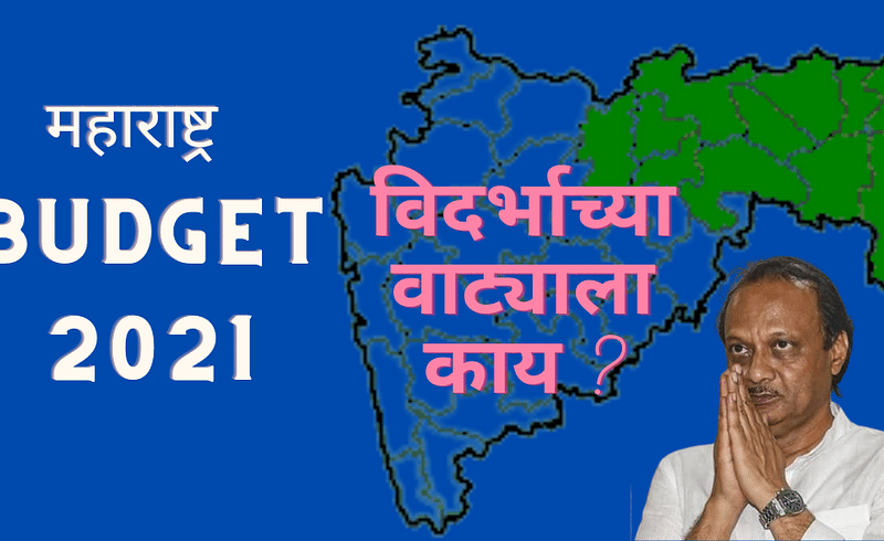 announcement for vidarbha in maharashtra budget 2021