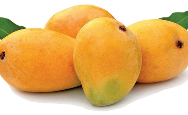 Hapus-Mango