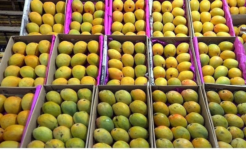 फळांचा राजा म्हणून ओळखला जाणारा आंबा बाजारात सर्वत्र दिसू लागला आहे. परंतु दर आवाक्याबाहेरच असल्याचे चित्र आहे.