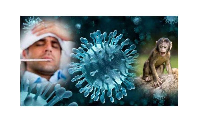 Three patients monkey fever found in Sawantwadi kokan marathi news
