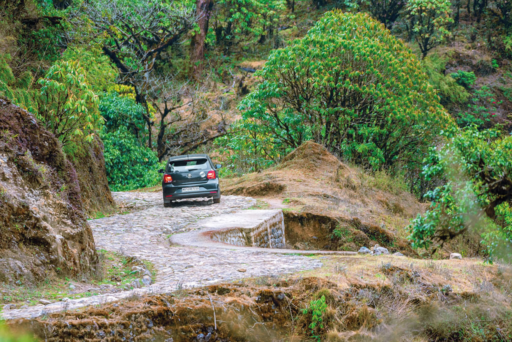 Road leading up to Sandakphu