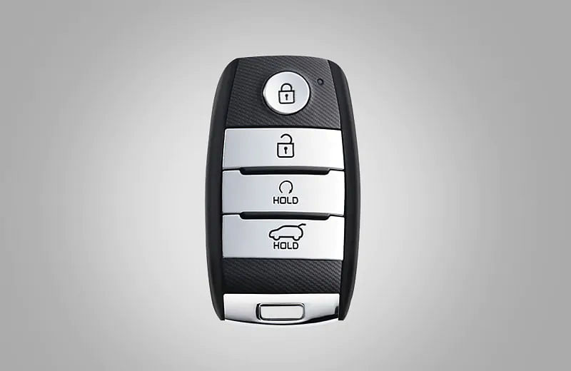 A remote start feature in the smart key for manual variants