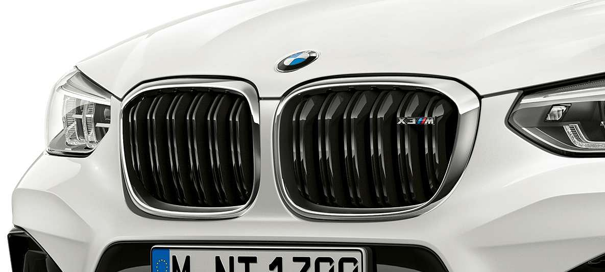 BMW signature kidney grille with blacked-out double bars
