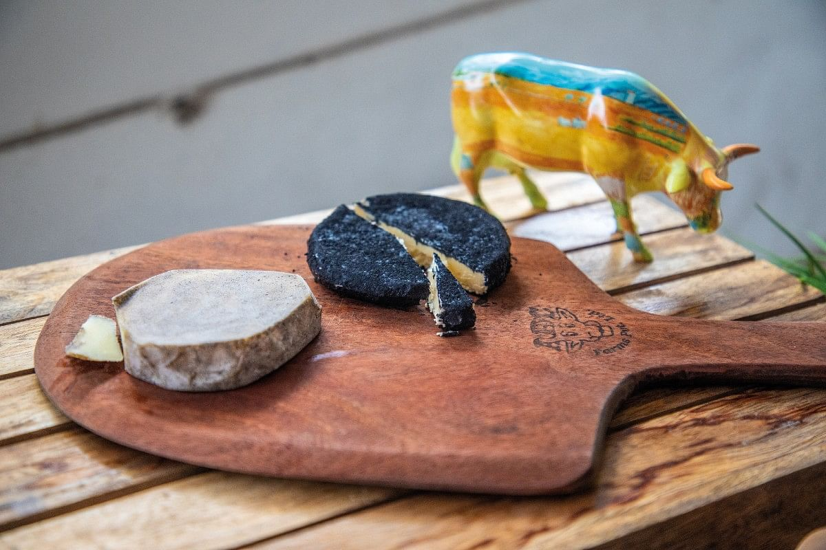 Cheese ripened with charcoal and wood ash;