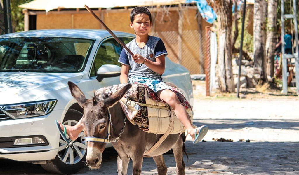 The beast of burden is still popular deep in the hinterlands of Turkey