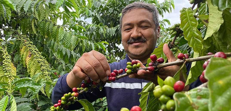 Nestlé scientists discover next-generation coffee varieties
