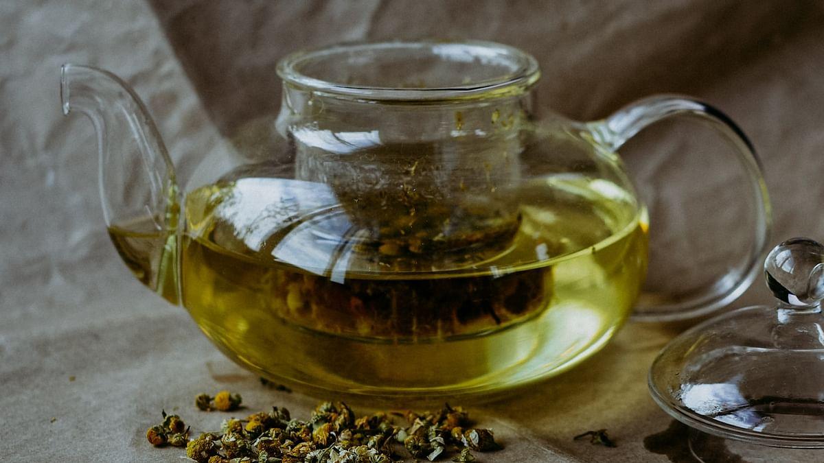 Organic green tea helps to build immunity