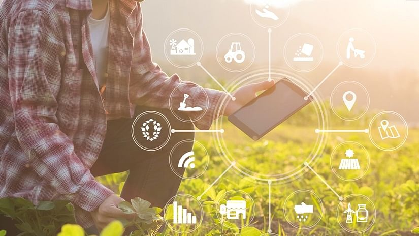 AI & farm analytics strengthen the future of food production