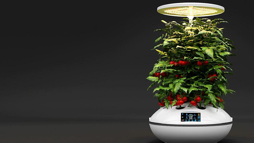 Agro2o - A soil-less loT Smart Garden