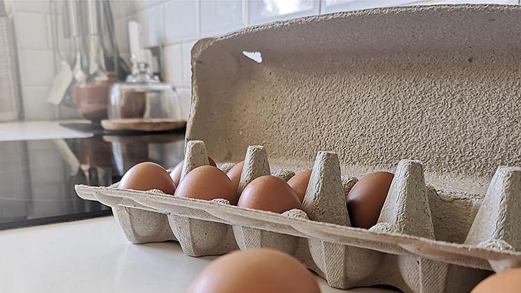 Huhtamaki launches plastic-free egg carton in US & Brazil