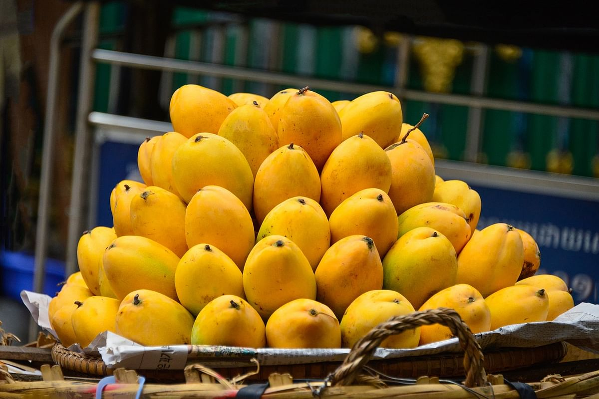 APEDA, in collaboration with the Indian embassy and the importer LuLu group, on 15 July 2021, organized a mango promotion program in Dubai