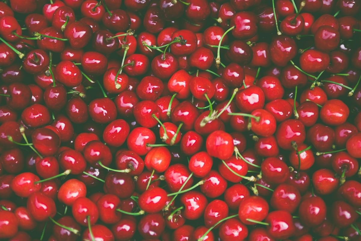 India exports first commercial shipment of Kashmir's Mishri cherries to Dubai