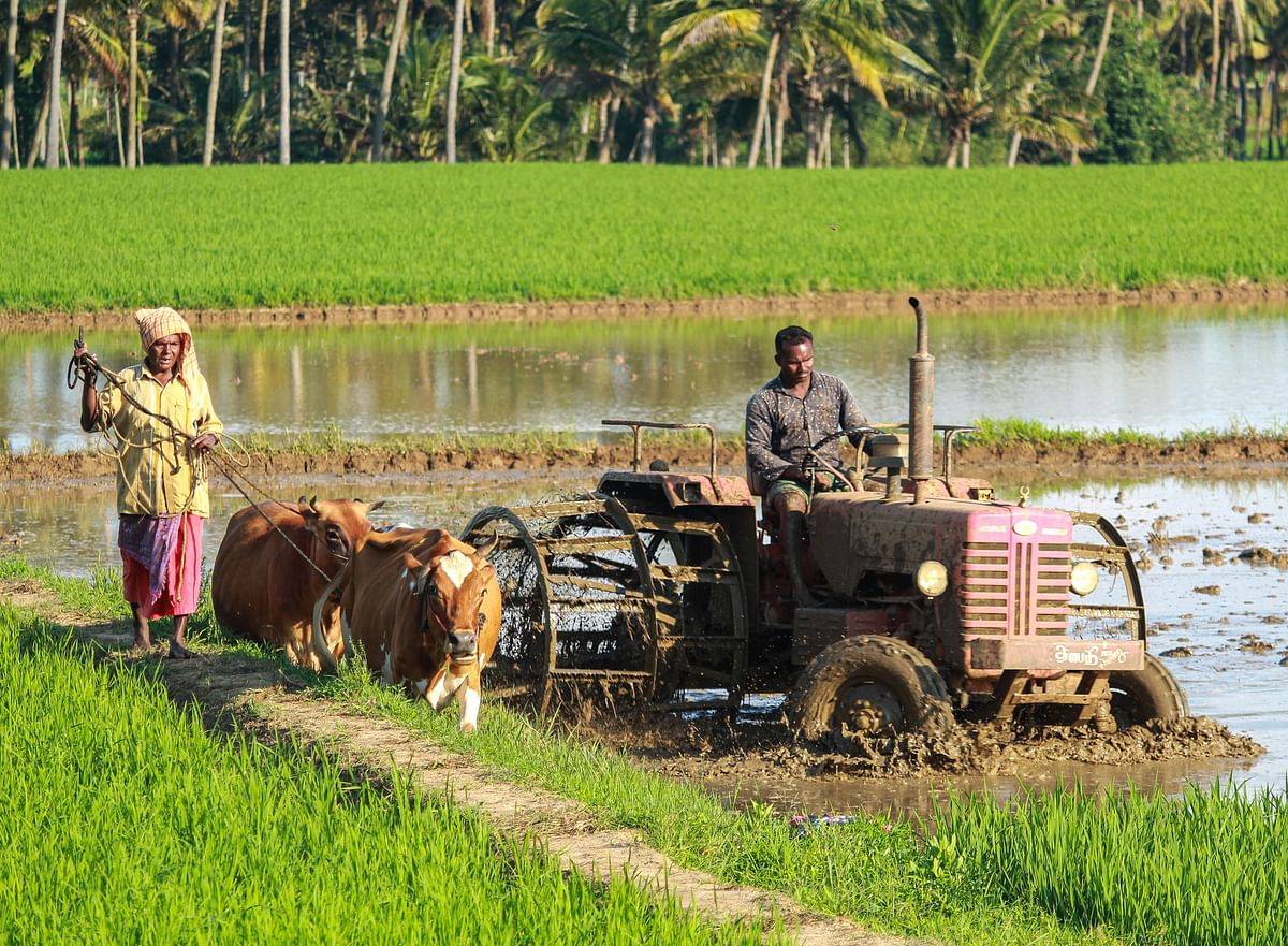 National Food and Nutrition Campaign for farmers launched