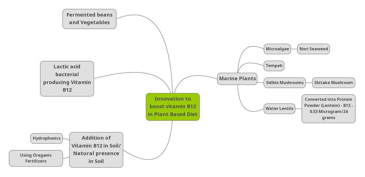 Mind map depicting various Innovations to Boost Vitamins B12