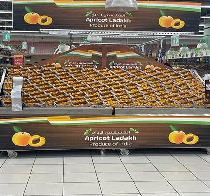 First consignment of Ladakh apricot exported to Dubai