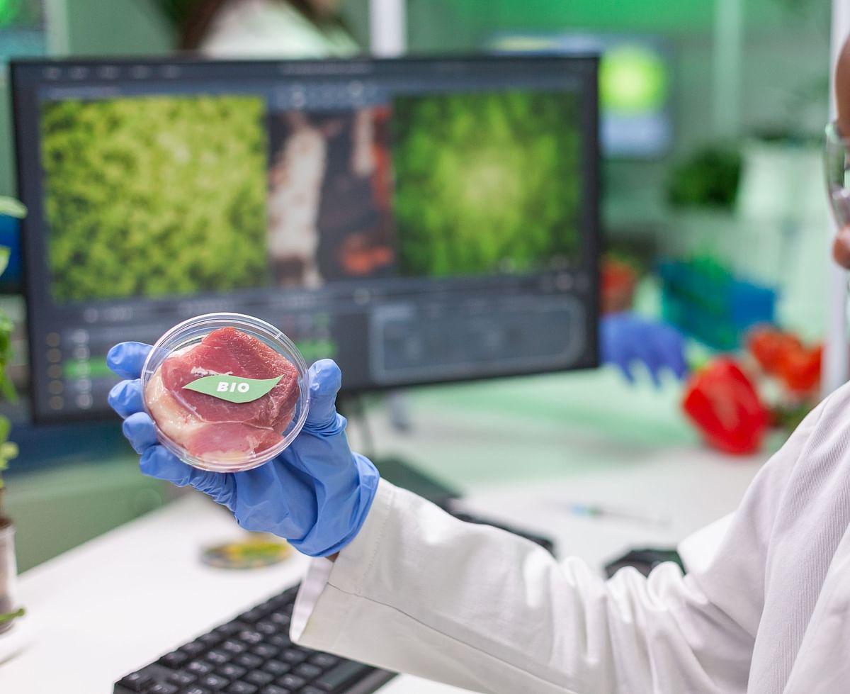 Givaudan, Bühler, & Migros establish pilot plant for cell-based meat