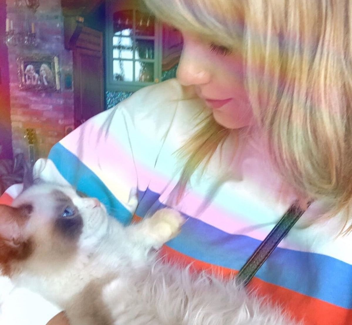 Taylor Swift files to trademark her cats' names