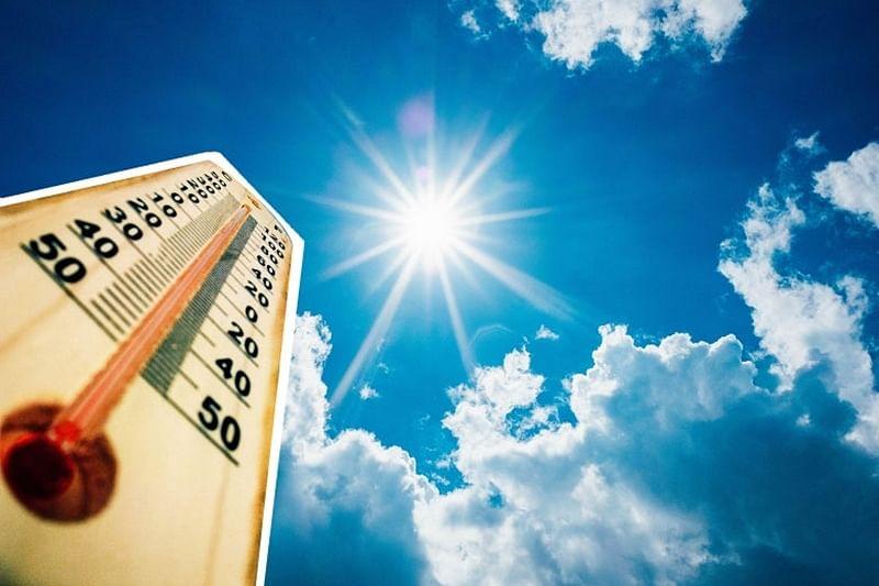 Bihar heatwave toll rises to 101