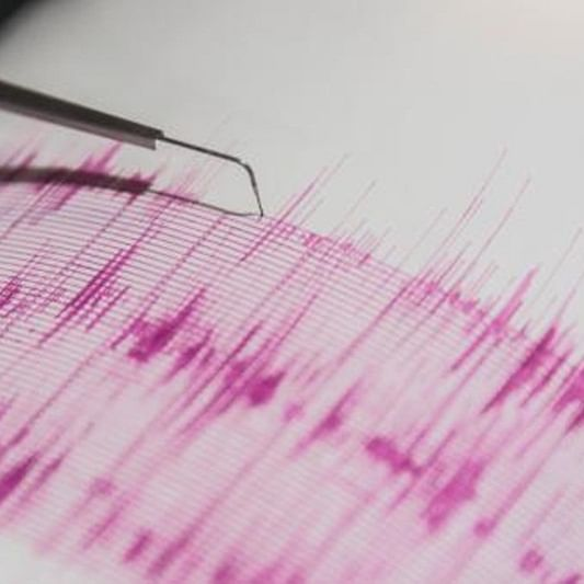 Maharashtra: Mild tremor in Palghar; no casualty or damage to property