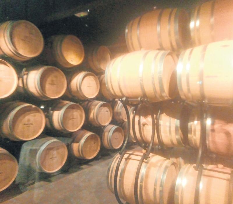 The wine barrel cellar at Zweifel Wine