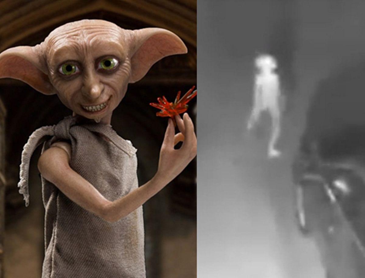 Social media aflutter after 'Dobby' like elf creature captured on US home security camera