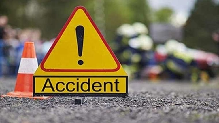 Mumbai: 53-year-old man injured after a coconut tree fell on him while it was being cut by civic contractor