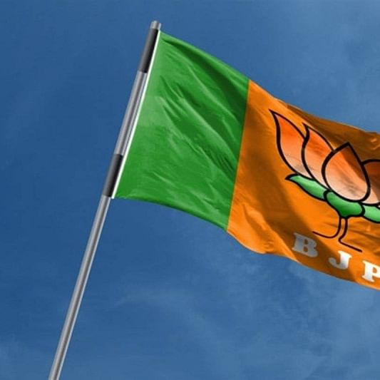 Jharkhand Assembly elections: BJP MP organises tribals' rally
