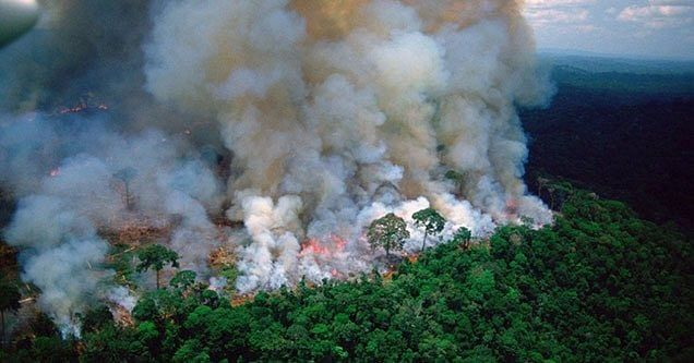 In Pics: Fires in Amazon rainforest rage at record rate