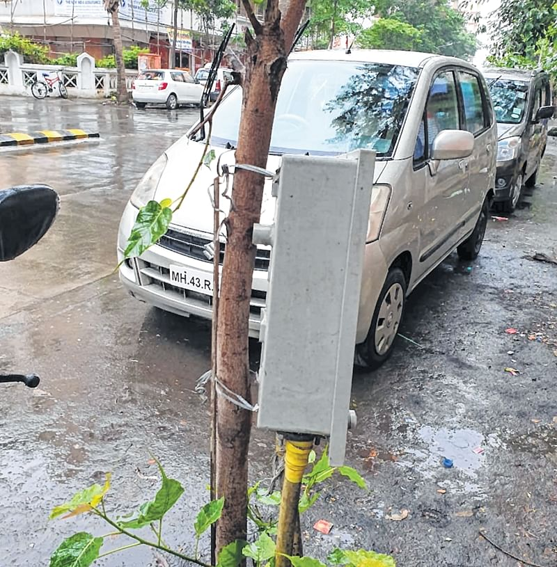 Mumbai: Shocking! 400V box tied to tree