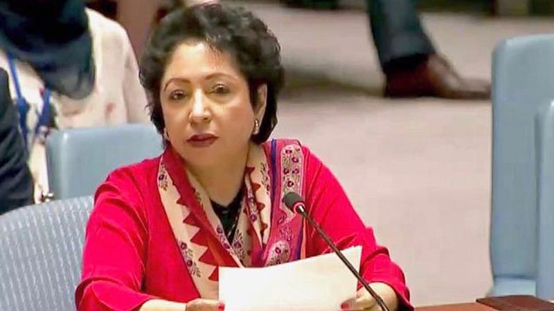 You don't deserve to represent us': Pakistani accuses Maleeha Lodhi of corruption