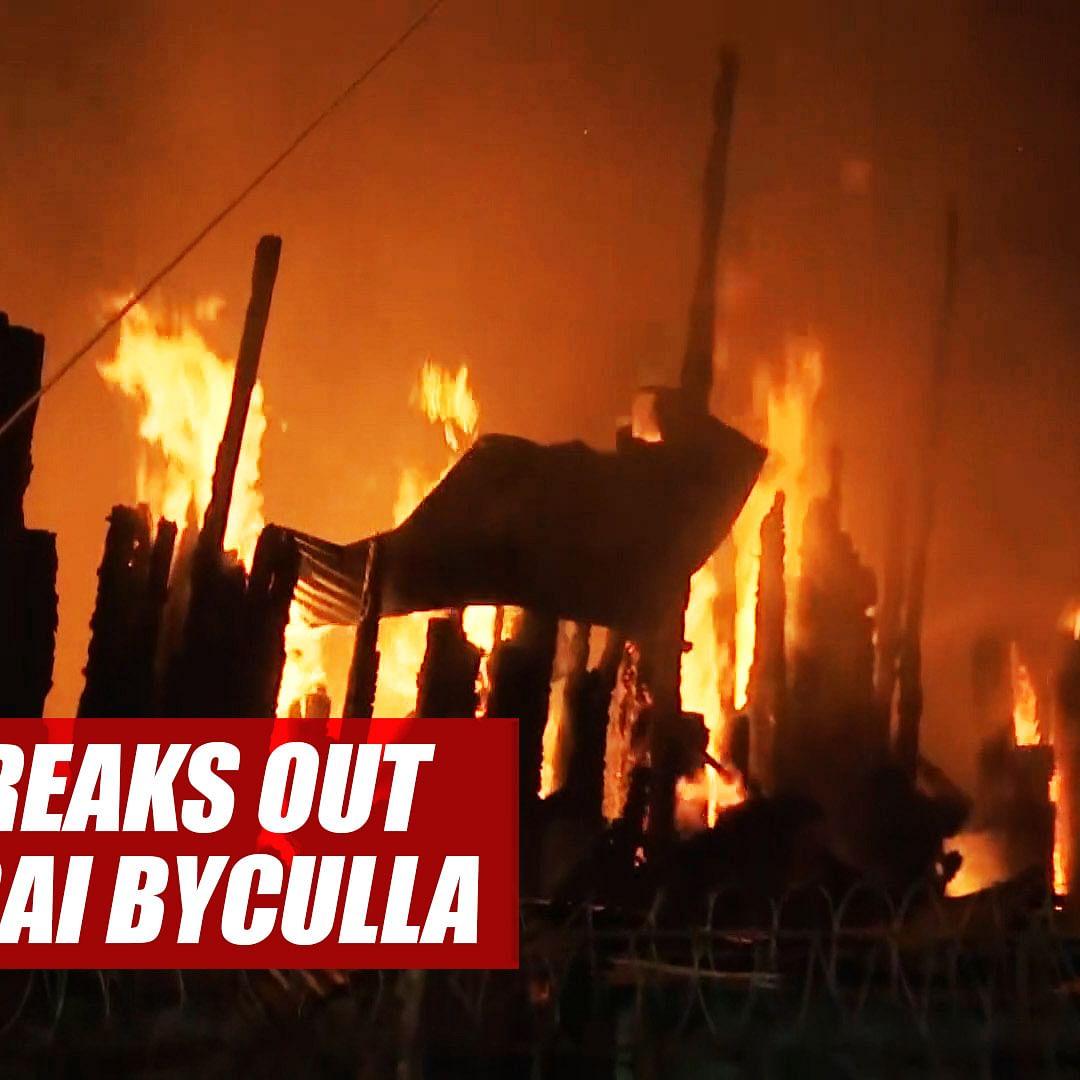 Fire Breaks Out At Timberyard Mustafa Bazaar In Mumbai, 8 Fire Tenders On Spot