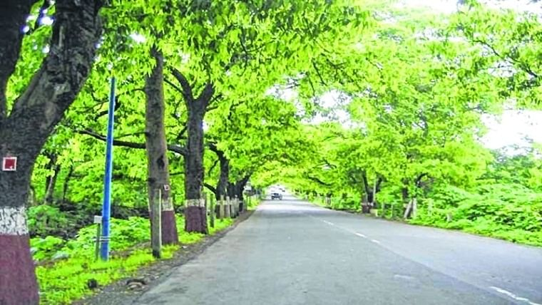 UJJAIN: HUNDREDS OF TREES PLANTED AT VARIOUS PLACES