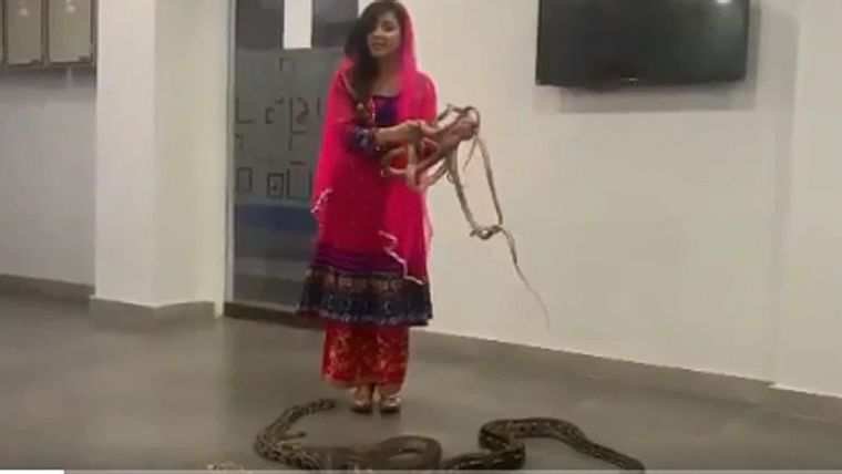Pakistani popstar lands in legal trouble after threatening PM Narendra Modi with snakes, python