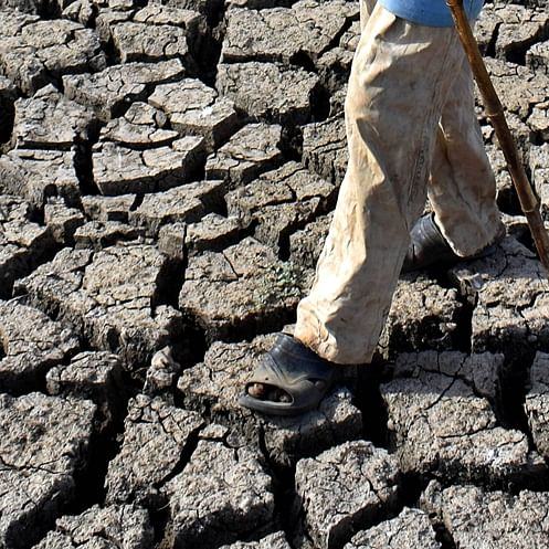 Drought-like situation declared in Manipur owing to scant rain
