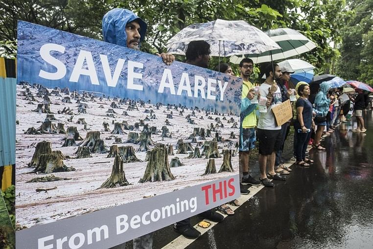 Stalin Dayanand Column: Decoding Aarey