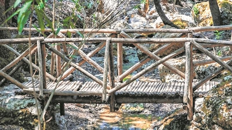 Tutors, parents build bridge on stream to access remote Aurangabad school