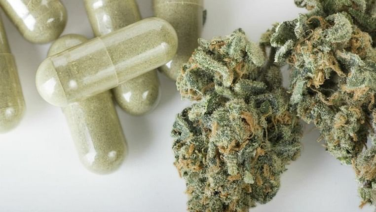 Cannabis does not improve mental health