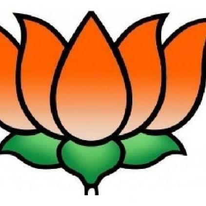 BJP manifesto 'more realistic'