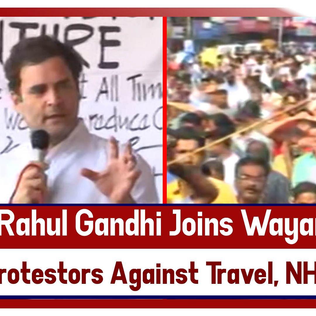 Rahul Gandhi joins Wayanad protestors against travel ban on NH-766