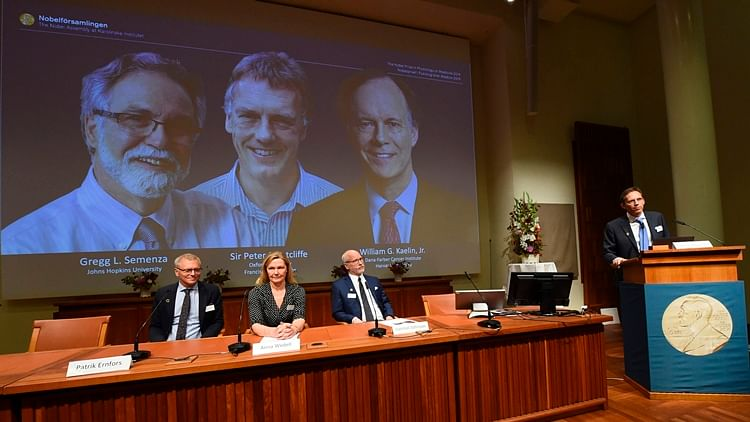 Nobel Assembly members sit in front of a screen displaying the winners of the 2019 Nobel Prize in Medicine as their names are announced. Gregg Semenza, Peter Ratcliffe and William Kaelin (L-R)