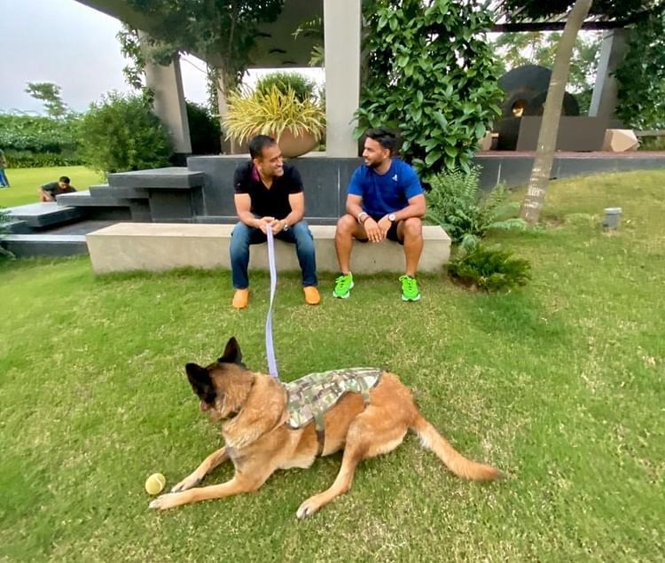 Pant spends time with Dhoni at his Ranchi residence, tweets 'Good vibes' photo