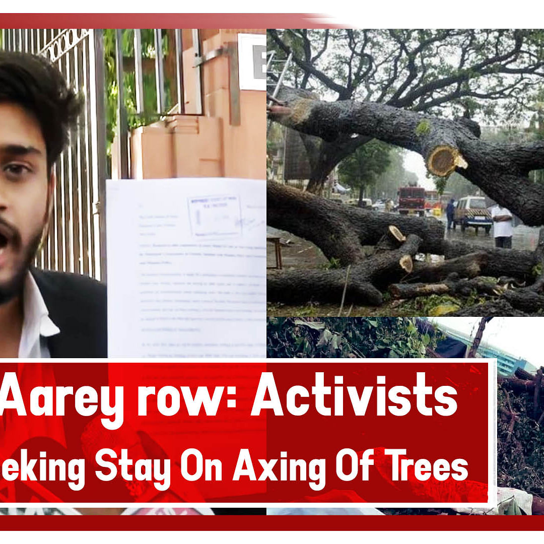Mumbai Aarey row: Activists reach SC seeking stay on axing of trees