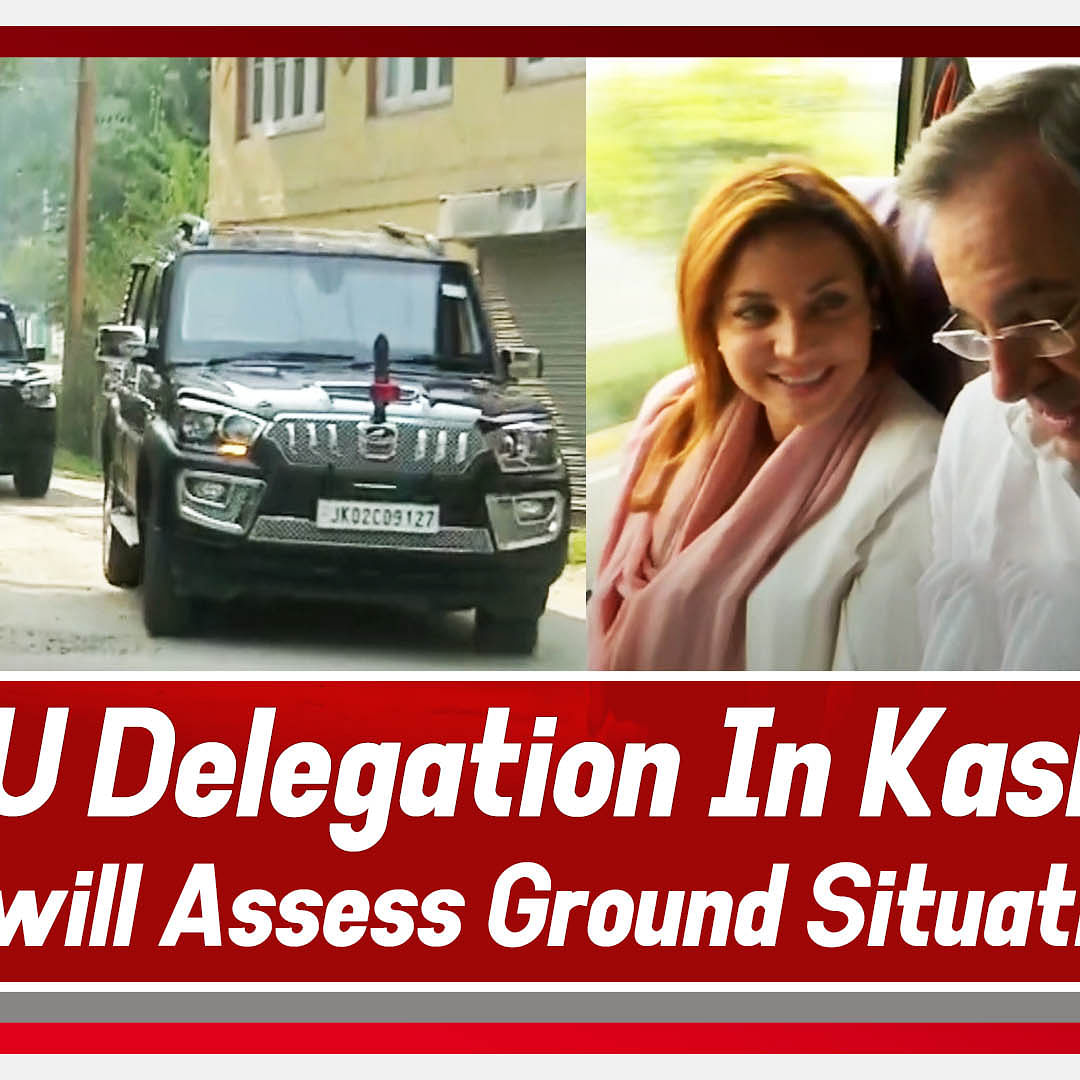 EU Delegation In Kashmir, Will Assess Ground Situation