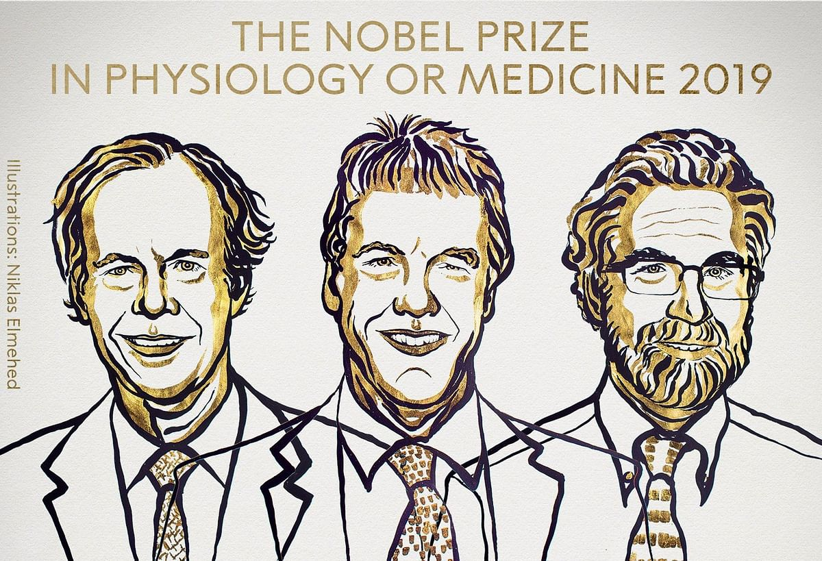 2019 Nobel Prize in Medicine awarded to three scientists for explaining how cells adapt to oxygen levels