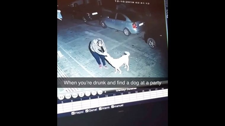 Video of drunken man dancing with a street dog goes viral; netizens share about their pets