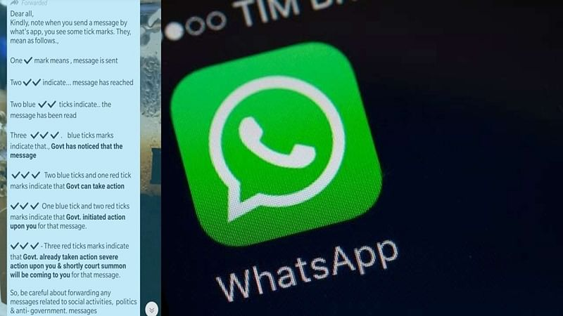 Fact Check: Do three red ticks on WhatsApp mean the government is initiating action against you?